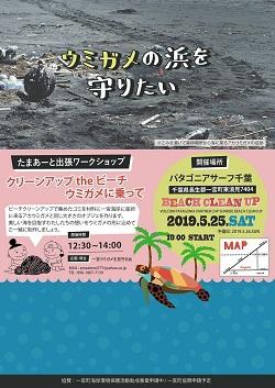 地域クラブ【長生郡】ウミガメの浜を守りたい!クリーンアップtheビーチ ウミガメ