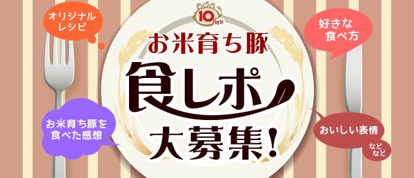 お米育ち豚 食レポ大募集!