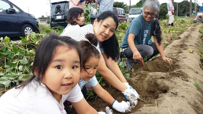 おばあちゃんもお母さんもみんなでサツマイモ掘り。