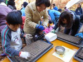 サニーレタスの種まき。子どもたちも楽しそう!