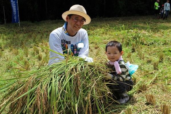 親子で稲刈りを体験、たくさん刈れたね!