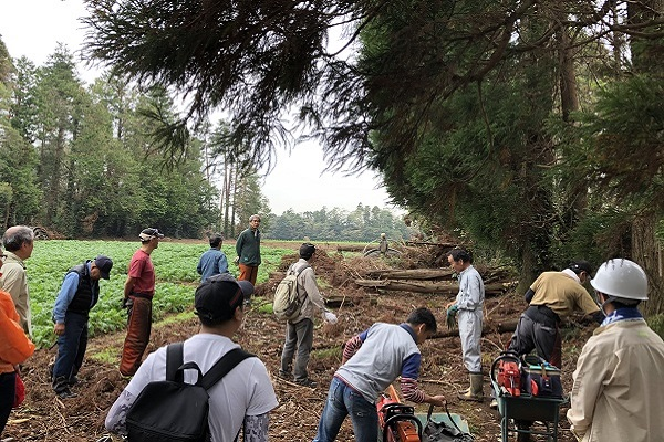農道を塞いだ倒木の撤去(10月27日)