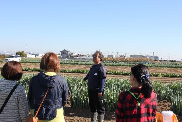 深谷ねぎの栽培や収穫について生産者の吉岡さんからお聞きしました