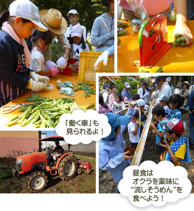 農家でのお仕事体験の様子