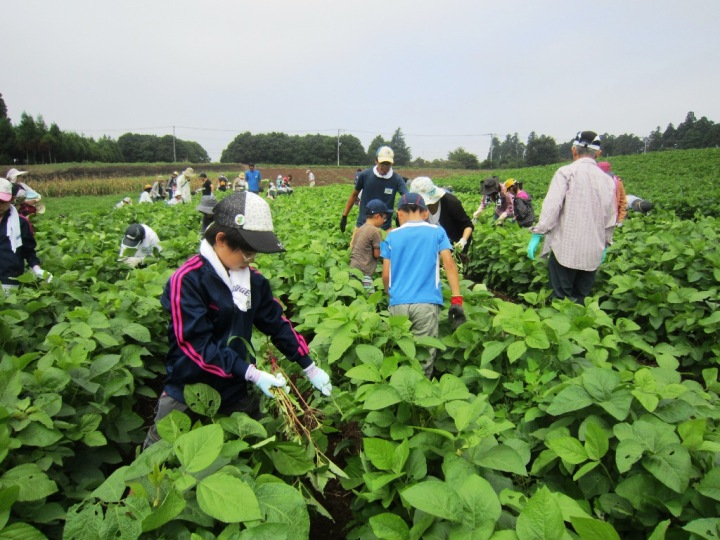 農作業で一番大変な暑い時期の草取り。みんなで頑張ったのできれいになりました。