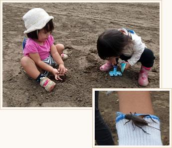 泥遊びと虫の写真